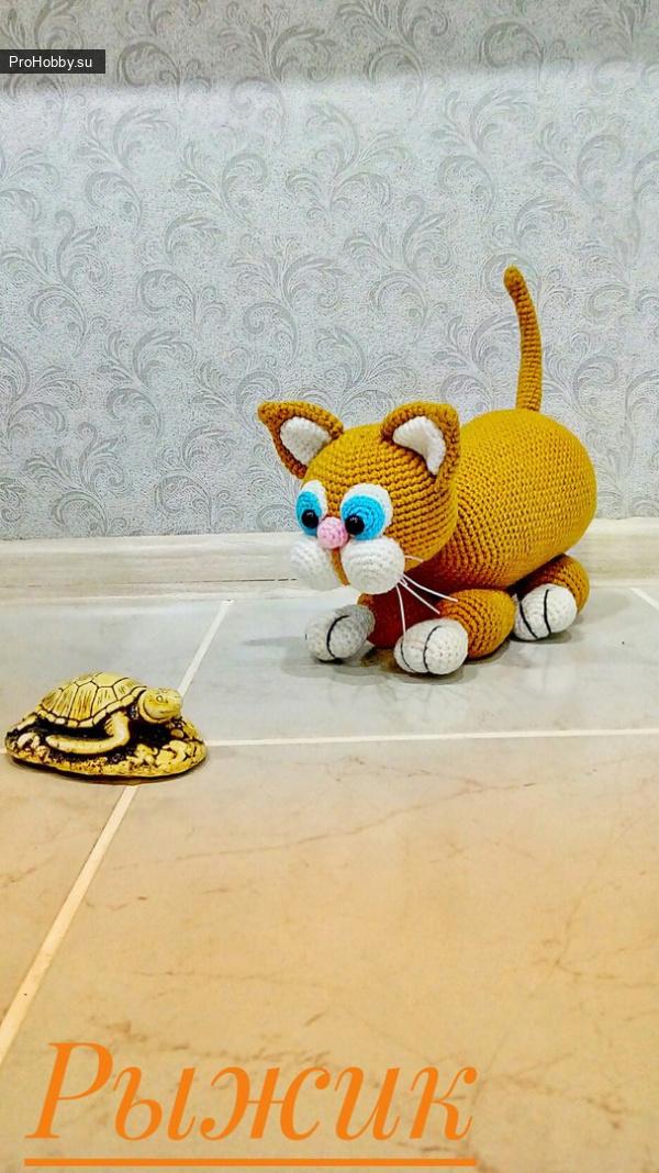 Рыжик-кот